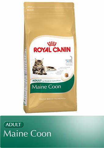 royal canin maine coon adult trockenfutter. Black Bedroom Furniture Sets. Home Design Ideas