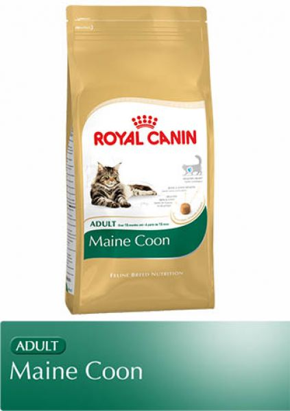royal canin maine coon adult trockenfutter. Black Bedroom Furniture Sets. Home Design Ideas